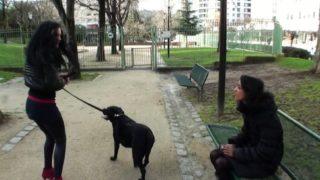 cette salope promène son chien